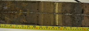 Figure 1: A section of the sediment record from Albion Ponds.