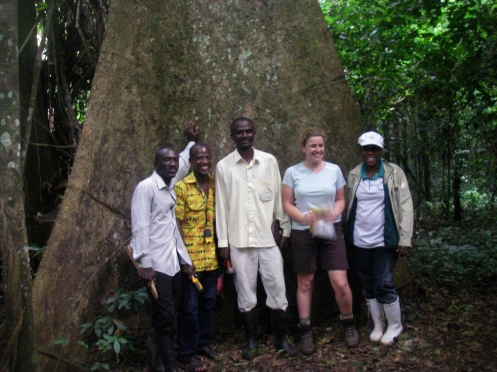 The PDRA will be part of an international team; partners based at University of Nottingham, Oxford Brooks University, Imperial College London, Oxford University, University of Texas at Austin and the Forestry Research Institute of Ghana