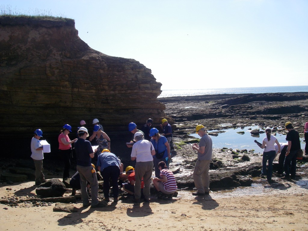Sunshine at Howick Haven (session 1)