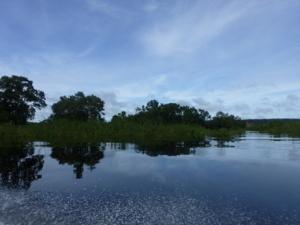 amazone-rivier