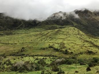 Huayabamba 1