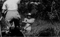 The author pulling a canoe through the marsh at Zancudococha in 1988. Photo: Miriam Steinitz-Kannan.