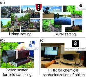 Urban vs. rural pollen chemistry project design
